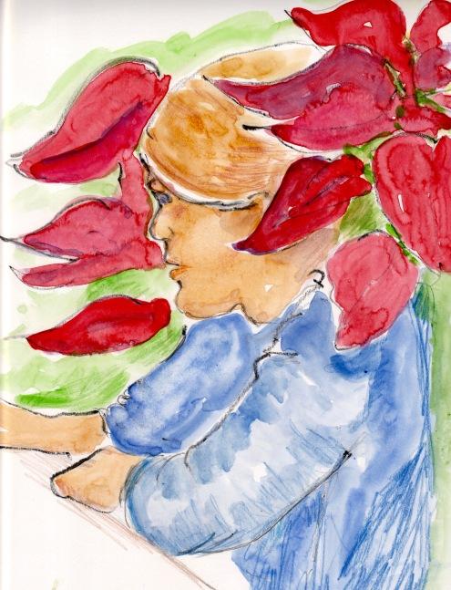 Poinsettia - 1 (2)