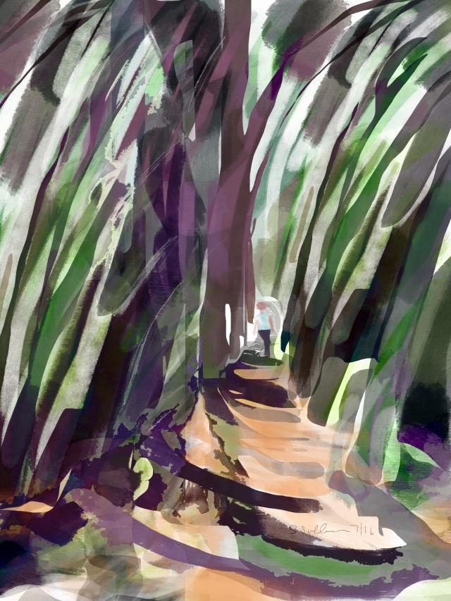 Hiking through Porquerolles Island Forest