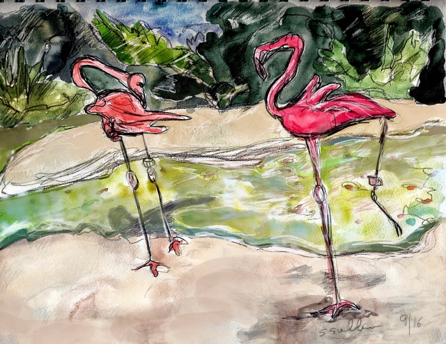 Two Pink Flamingos Interact at the San Diego Zoo