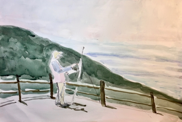 An Artist at Torrey Pines State Park