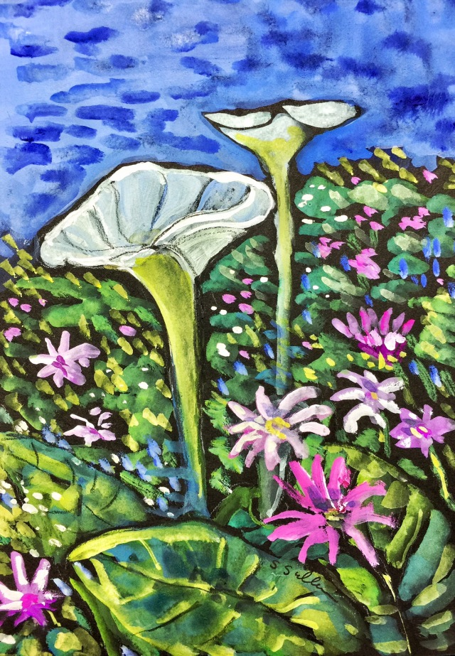 Sketch of a flower covered hillside in San Diego by Sarah Sullivan