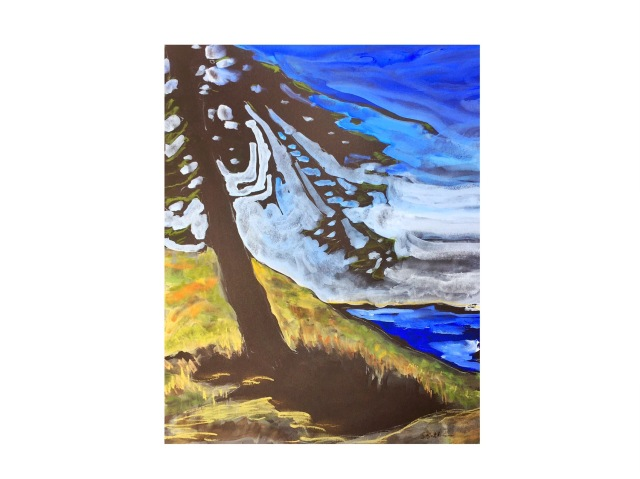 Backlit Tree at Pierce Point Vista by Sarah Sullivan