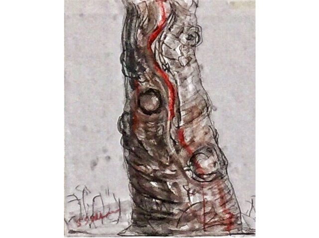Charcoal Sketch of a Tree Trunk by Sarah Sullivan