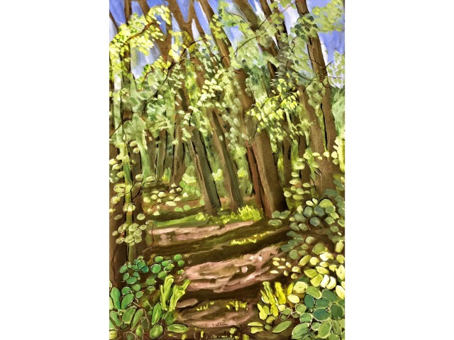 Sketch of a Thicket of Cottonwood Trees by Sarah Sullivan