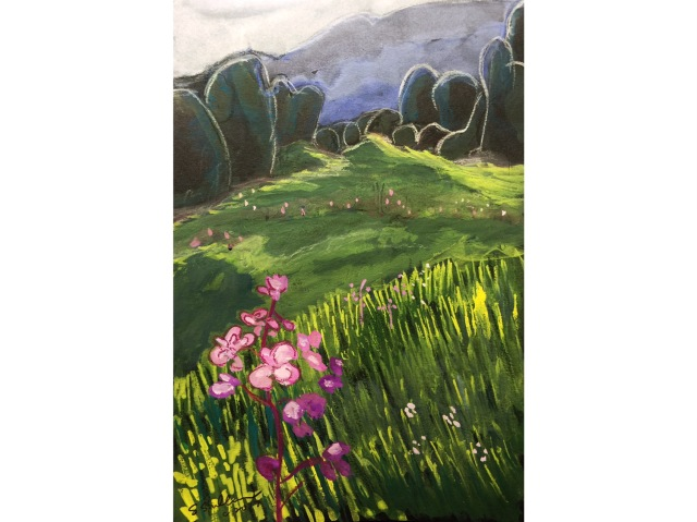 Sketch of a Telluride ski slope meadow by Sarah Sullivan