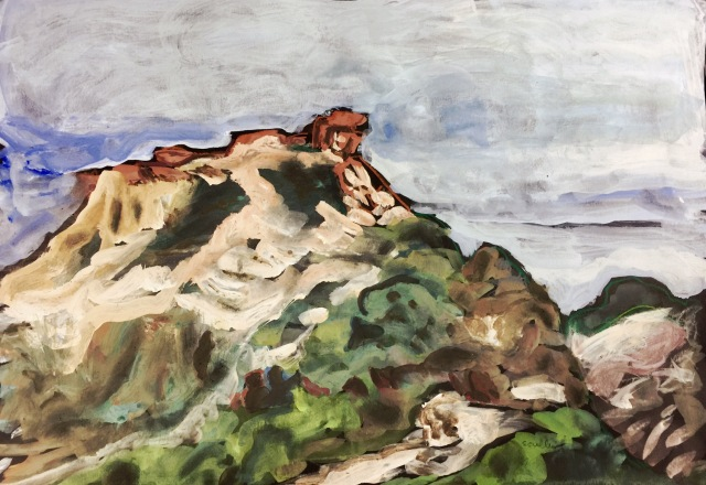 Sketch of the brown cliffs at Torrey Pines State Reserve by Sarah Sullivan