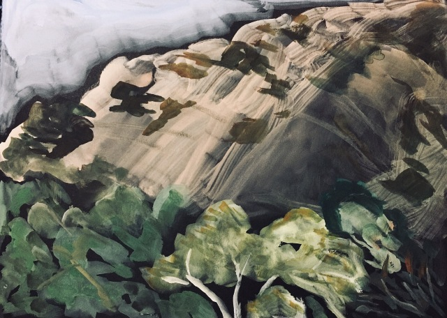 Sketch of Kwaay Paay Peak above the Sycamores by Sarah Sullivan