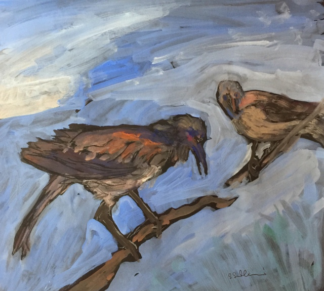 Sketch of two stuffed birds by Sarah Sullivan