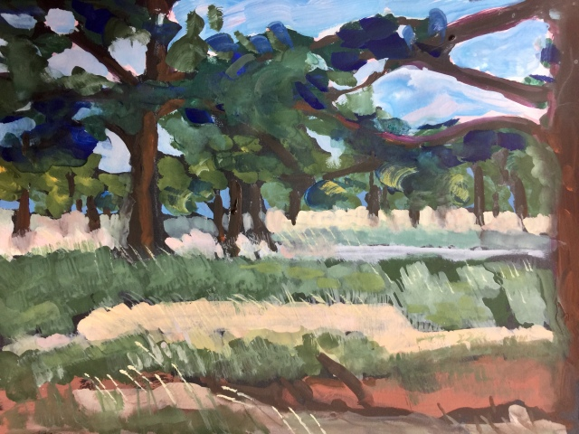 Sketch by Sarah Sullivan of a meadow near Boulder