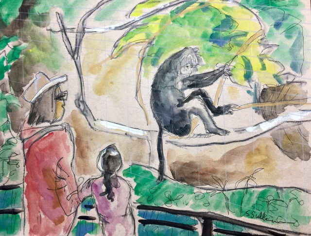 Sketch by Sarah Sullivan of Primates at the San Diego Zoo